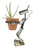 Un robot macetero