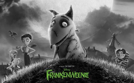 Tim Burton: 'Frankenweenie', remontando el vuelo