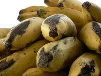 ¿Cómo aprovechar los plátanos maduros que quedan en el frutero?