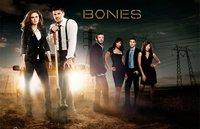 'Bones' tendrá una atípica séptima temporada