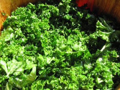 El kale, un alimento que lo tiene todo