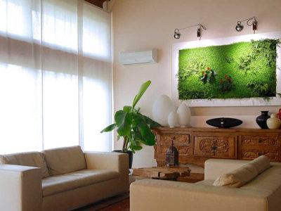 Un cuadro vegetal, una ingeniosa manera para decorar tu casa