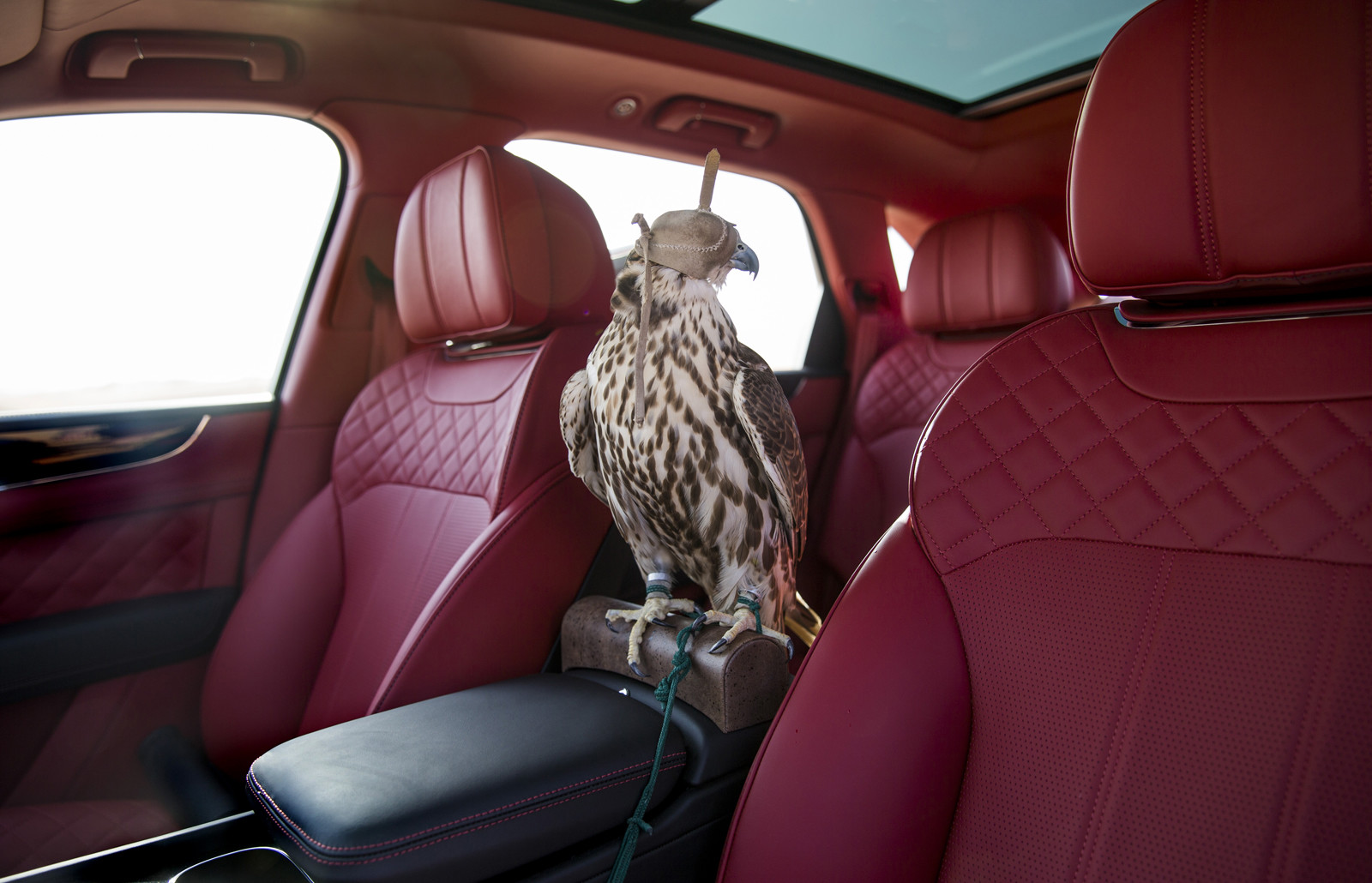 Foto de Bentley Bentayga Falconry (9/36)