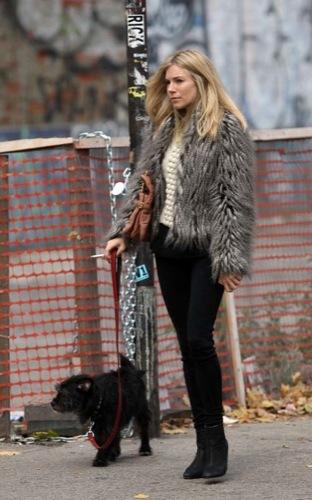 Sal a pasear al perro con estilo, copia a Sienna Miller XII