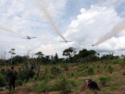 Colombia se niega a continuar la aspersión aérea con glifosato, mientras que Estados Unidos presiona