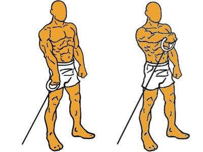 Guía para principiantes (XLIX): Elevaciones frontales alternas con polea baja