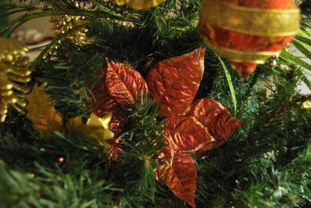 árbol andrea 2