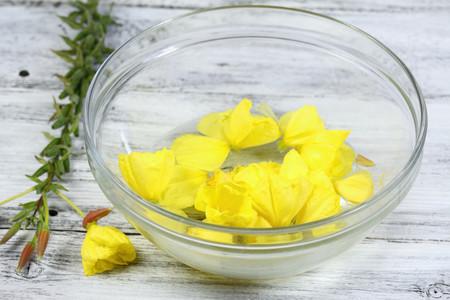 flores-bach-homeopatia