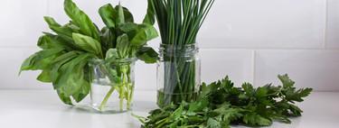 Ya sea perejil, cebollino o albahaca, este es el mejor método para conservar hierbas aromáticas ya cortadas