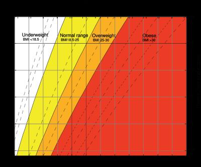 Grafica del BMI