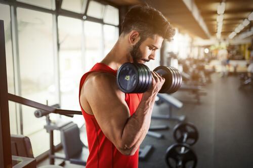 Novato en el gimnasio: ¿es mejor entrenar fuerza o hipertrofia?