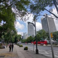 Foto 29 de 38 de la galería fotos-con-el-motorola-edge en Xataka México