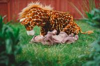 Hay una jirafa en mi jardín
