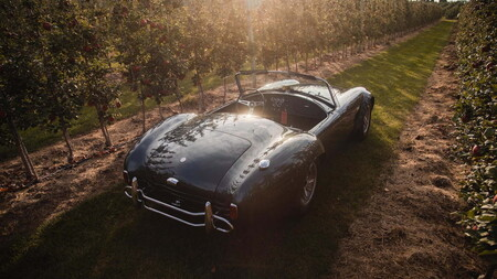 Shelby Cobra 427 1965 Carroll Shelby Subasta 7