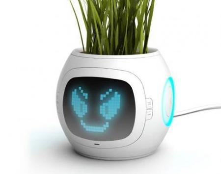 Digital Pot, otra alternativa para las plantas de los más olvidadizos