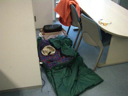 Hideki Kamiya durmió en las oficinas
