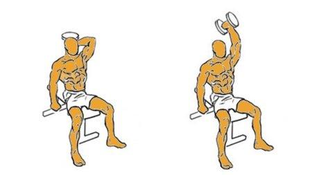 triceps2