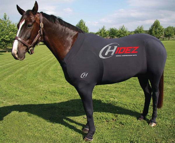 traje-caballo