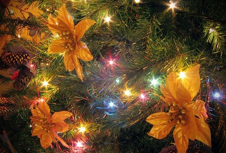 Se acercan las navidades, regalos interesantes para todo fotógrafo
