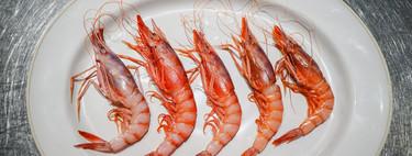 Cómo identificar la verdadera gamba roja, la reina de los crustáceos españoles, y dónde comer las mejores