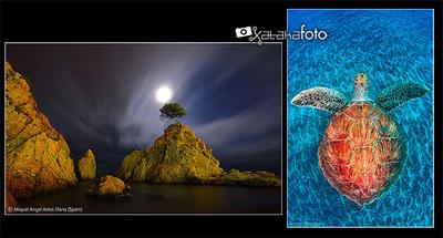 Hablamos con Jordi Chias y Miquel Ángel Artús Illana, premiados en los Wildlife Photographer of the Year 2012