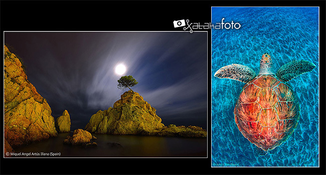 Hablamos con Jordi Chias y Miquel Ángel Artús Illana, premiados en los Wildlife Photographer of the Year 2012