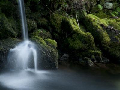 No, el agua no cambia en función de las emociones positivas o negativas