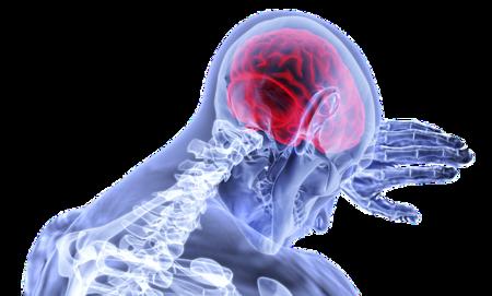 Descifrando neurológicamente las claves de la motivación para continuar luchando por una meta