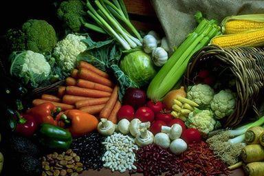 Relacionan el aumento de las muertes con la alimentación en EE UU