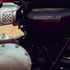 Foto 23 de 23 de la galería triumph-bonneville-t100-bud-ekins-2020 en Motorpasion Moto
