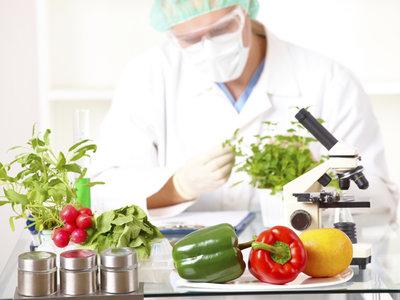 ¿Son seguros los alimentos transgénicos? Esto es lo que nos dice la ciencia