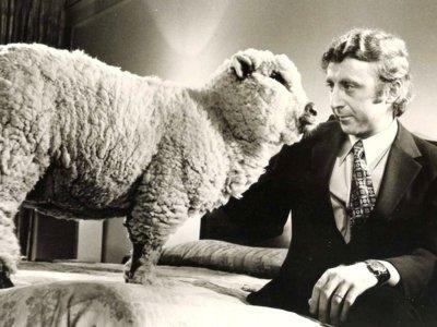 Hollywood, artistas, amigos y admiradores se despiden del genial Gene Wilder