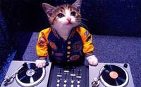 Rumor: 'DJ Hero' podría estar siendo desarrollado por FreeStyleGames