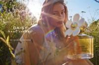 Los envases de perfumes también se clonan: Zara contra todos