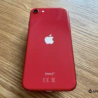 iOS 14 será compatible con todos los iPhone que soportan iOS 13, según una página interna de Apple