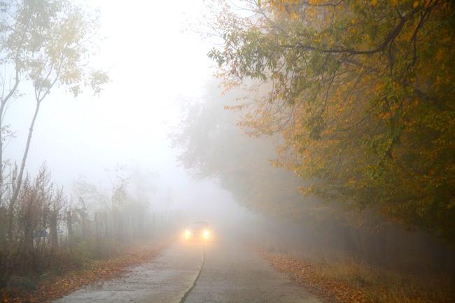 Fog 510670 1280