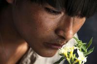 Oscar 2010 y Goya 2010: 'La teta asustada', memorias del subdesarrollo