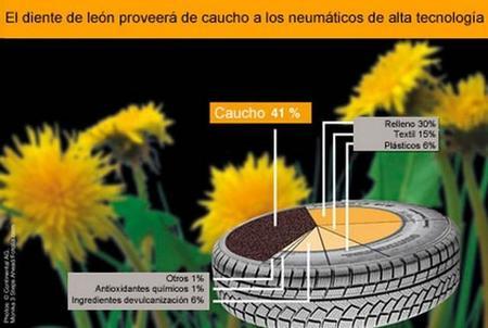 Continental está investigando sobre neumáticos de goma de diente de león