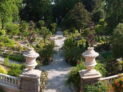 Jardín Botánico de Padua, el jardín universitario más antiguo del mundo