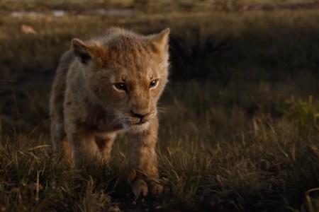 'El Rey León': Disney estrena el trailer completo del impresionante remake en acción real
