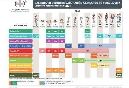 Calendario común de vacunación a lo largo de toda la vida recomendado por Sanidad para el 2020