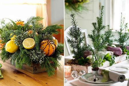 Las 13 mejores ideas con plantas para decorar la mesa en Navidad
