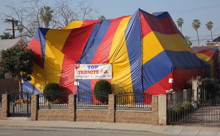 640px Tent Fumigation