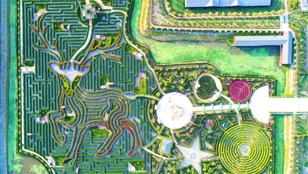 El laberinto mas abultado del planeta es este colosal jardín en China y solicita recorrer mas de 9,4 kilómetros para salir