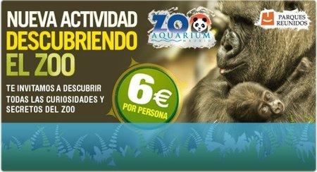 Descubriendo el Zoo de Madrid, una actividad muy interesante