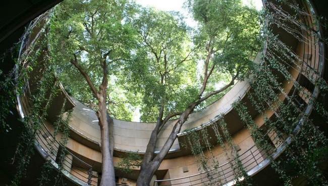 Jardin Botanico 4
