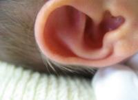 La mejor manera de limpiar los oídos del bebé es con el codo