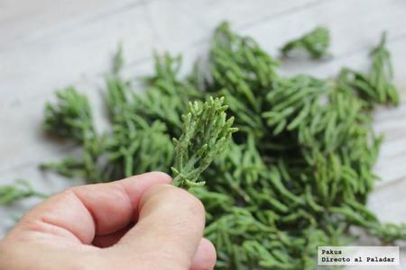 Porcion De Salicornia