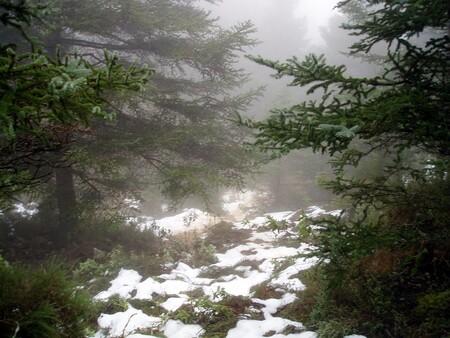 La Sierra de las Nieves de Málaga, será el decimosexto Parque Nacional de nuestro país