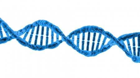 Dna 1370603787lgy